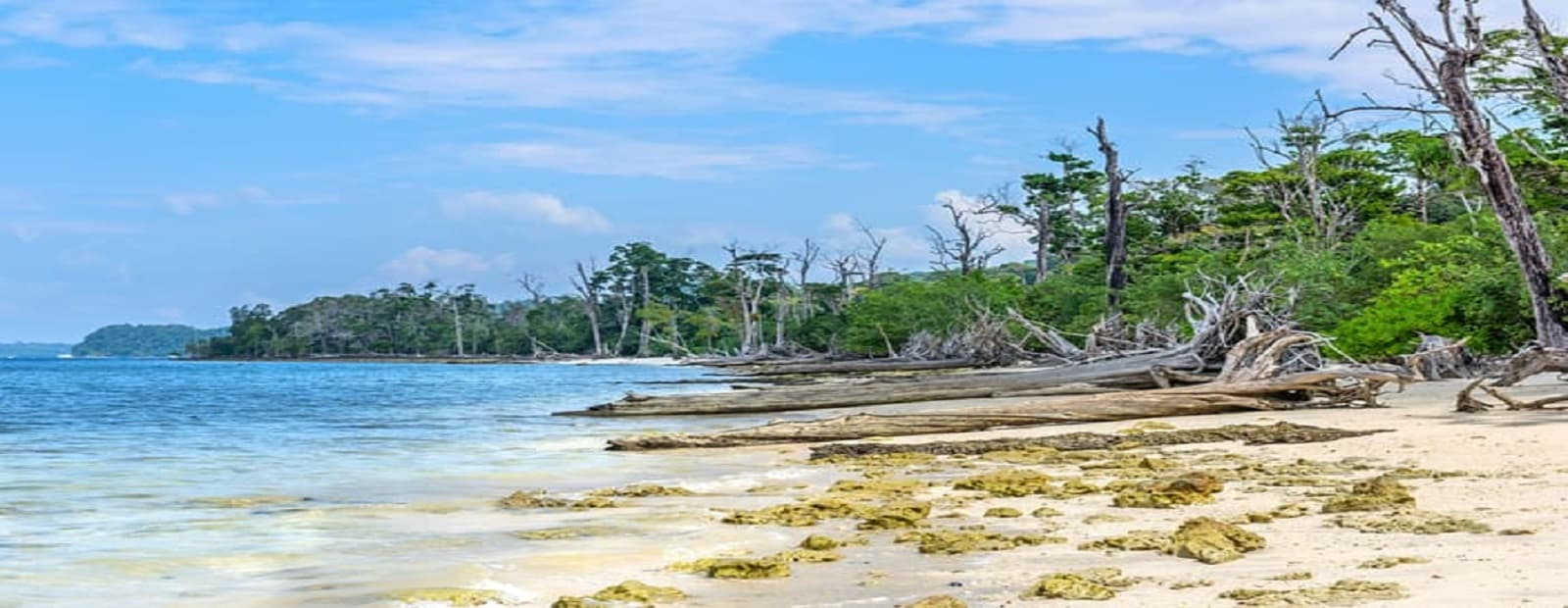 Surat to Andaman Packages